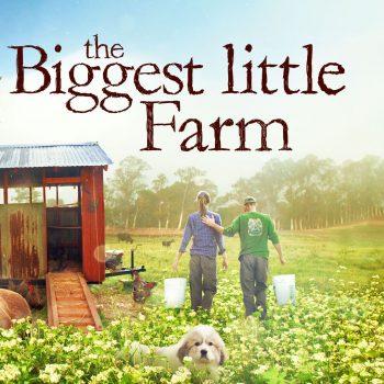 Unelmien maatila
